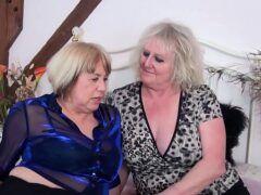 Sexo con gordas coroas safadas no pornô